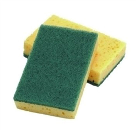 Picture of SPONGE SCOURER